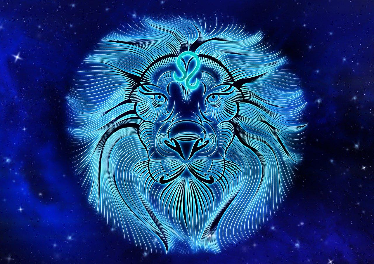Lions sont les meilleurs au lit